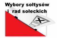 wybory_soltysi